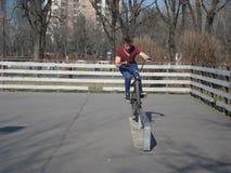 Jugendlicher, der das Fahrrad auf dem Skateboard fahren des Bereichs im Park reitet Lizenzfreie Stockbilder
