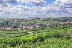 Jugenheim,Rheinhessen,Germany. Wine Village of Jugenheim in Wine region of Rheinhessen,Rhineland-Palatinate,Germany royalty free stock images