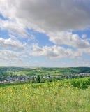 Jugenheim,Rhinehessen,Germany. Wine Village of Jugenheim in Rhinehessen,Rhineland-Palatinate,Germany royalty free stock photo