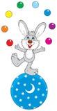 juggler зайцев цирка Стоковые Фотографии RF
