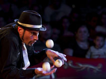 Juggler Concentration Royalty Free Stock Photography
