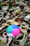 Juggling ball on an autumn leaves Stock Images