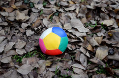 Juggling ball on an autumn leaves Royalty Free Stock Photos