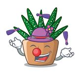 Juggling cartoon zebra cactus plant at park. Vector illustration stock illustration