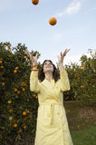 Juggling Oranges Stock Photo