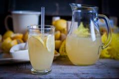 Jugo de limón Foto de archivo libre de regalías