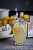 Jugo de limón Fotografía de archivo libre de regalías