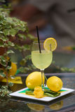 Jugo de limón fresco Imágenes de archivo libres de regalías