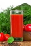 Jugo de tomates Imagen de archivo libre de regalías