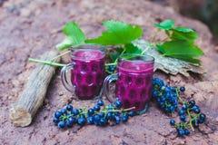 Jugo de uva en dos tazas foto de archivo libre de regalías