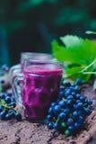 Jugo de uva púrpura en vidrio imagenes de archivo
