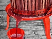 Jugo de uva roja fresco de la prensa Fotografía de archivo libre de regalías