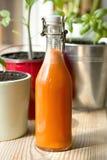Jugo de zanahoria en la botella de cristal Imágenes de archivo libres de regalías