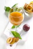 Jugo del ciruelo y frutas frescas con las hojas Imagen de archivo
