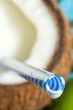Jugo del coco con concepto exótico del fondo del viaje del día de fiesta de la paja Imagen de archivo libre de regalías