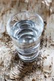 Jugo sano nórdico tradicional del abedul de la bebida del detox de la forma de vida Fotografía de archivo libre de regalías