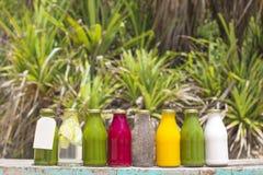Jugos vegetales crudos planchados en frío orgánicos Fotos de archivo