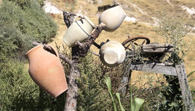 Jugs on a tree. With Cappadocia landscape in background, Turkey Royalty Free Stock Photography