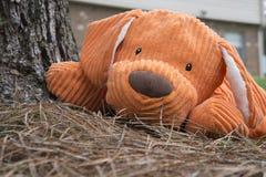 Juguete anaranjado del perro de la felpa del peluche Foto de archivo