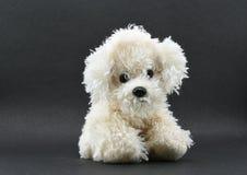 Juguete bastante blanco del perro aislado en fondo negro con la porción de espacio para el mensaje Imagen de archivo