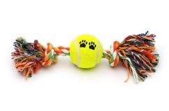 Juguete colorido para el perro fotos de archivo