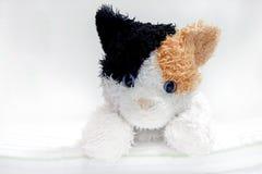 Juguete de Cat Doll Fotos de archivo libres de regalías