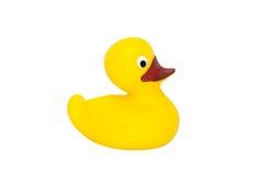 Juguete de goma amarillo del pato Fotografía de archivo libre de regalías