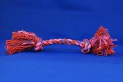 Juguete de la cuerda del tirón del perro Fotografía de archivo