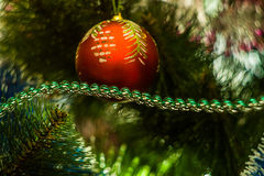 Juguete de la Navidad en el árbol de navidad Fotos de archivo