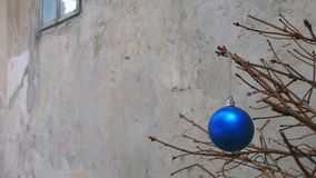 Juguete de la Navidad en una rama de árbol seca de abeto Fotos de archivo
