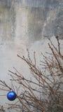 Juguete de la Navidad en una rama de árbol seca de abeto Imagen de archivo libre de regalías