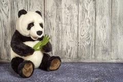 Juguete de la panda Imagen de archivo libre de regalías