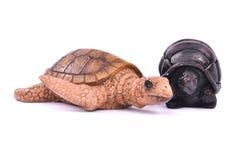 Juguete de la tortuga aislado Foto de archivo libre de regalías