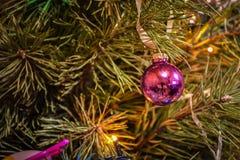 Juguete del árbol de navidad en un primer de la rama fotos de archivo libres de regalías
