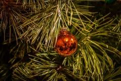 Juguete del árbol de navidad en un primer de la rama fotografía de archivo
