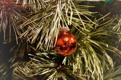 Juguete del árbol de navidad en un primer de la rama foto de archivo