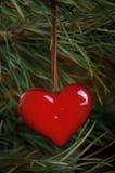 Juguete del Año Nuevo del corazón en el árbol de pino Imagen de archivo libre de regalías