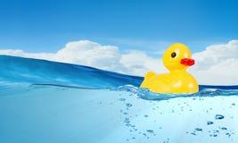 Juguete del pato Foto de archivo