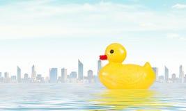 Juguete del pato Foto de archivo libre de regalías