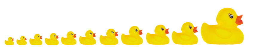 Juguete del pato de la familia Foto de archivo