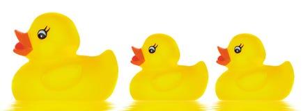 Juguete del pato de la familia foto de archivo libre de regalías