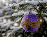Juguete del ` s del Año Nuevo en la rama del abeto cubierta con nieve Imagenes de archivo