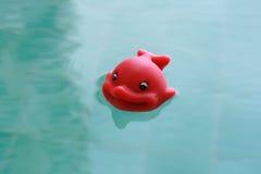Juguete flotante de los pescados de goma felices en luz del día Imágenes de archivo libres de regalías