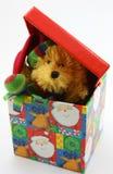 Juguete relleno del oso que enarbola del rectángulo de la Navidad Foto de archivo libre de regalías