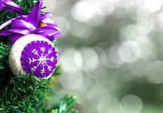 Juguete secado de la Navidad Fotografía de archivo