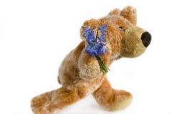 Juguete suave el oso Fotografía de archivo libre de regalías