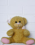 Juguete viejo del oso de peluche Fotografía de archivo libre de regalías