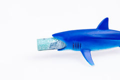 Juguete y dinero del tiburón Foto de archivo libre de regalías