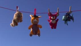 Juguetes animales suaves hermosos coloridos en secuencia y el cielo de la cuerda para tender la ropa metrajes