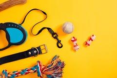 Juguetes - cuerda coloreada multi, bola, correo de cuero y hueso Accesorios para el juego y el entrenamiento en la opinión superi Fotografía de archivo libre de regalías